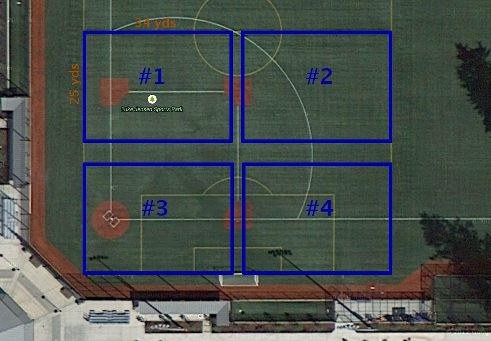 Field Layout
